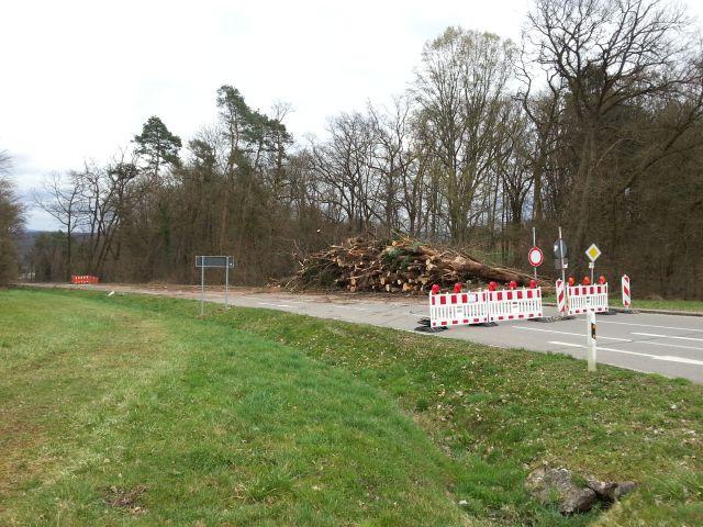 Höllbach 1
